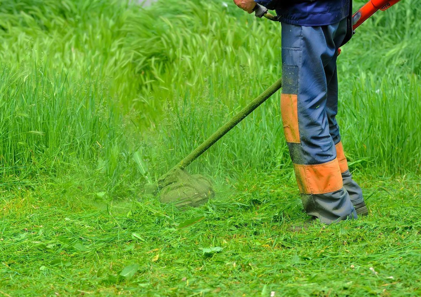 D broussaillage quimper ergu gaberic pluguffan les for Entretien jardinage chez particulier
