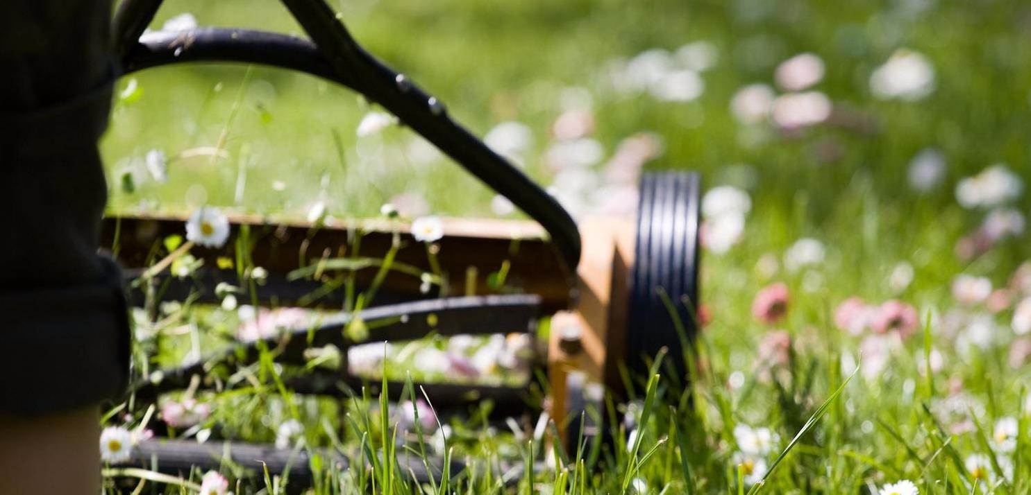 Tonte de pelouse quimper ergu gaberic pluguffan les for Entretien jardin concarneau